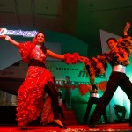 Define International - MAS Charity Gala Night-19